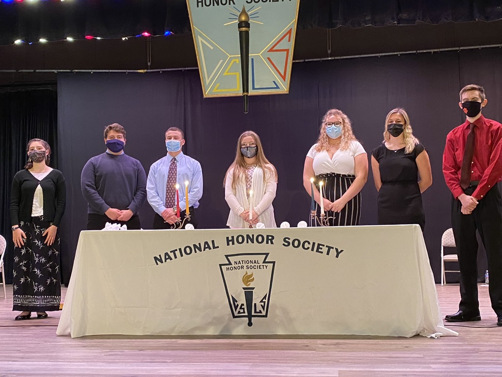DP HS NHS Induction Ceremony 2020