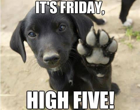 High 5 Friday